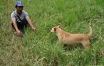 Mahout and pup