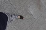 Elephant pants and lesbian sandals...