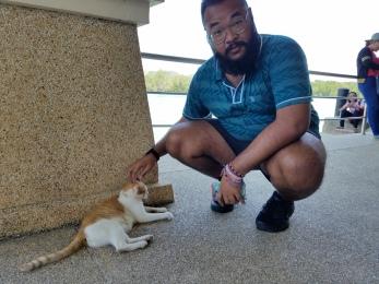 Ferry terminal cat