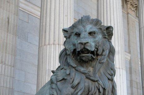 El león